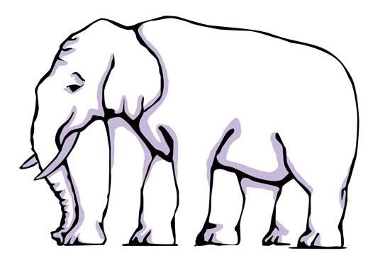 illusion optique éléphant